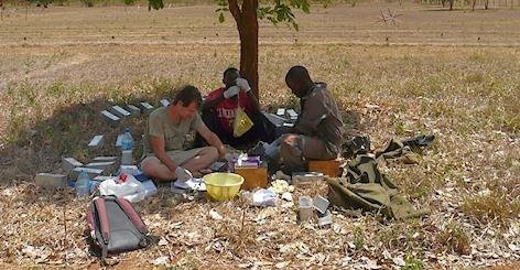 Trapping rats in a Tanzanian field