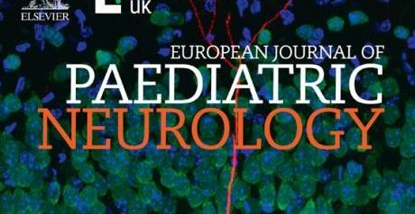 GABAergic abnormalities in the fragile X syndrome. European Journal of Paediatric Neurology, 2020